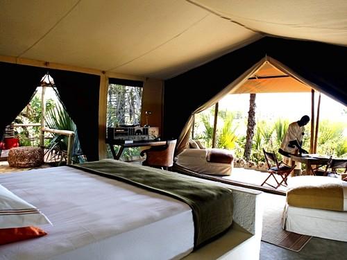 chem-chem-safari-lodge12